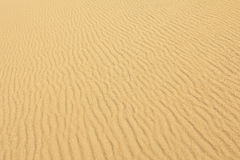 Yellow wavy sand Stock Image