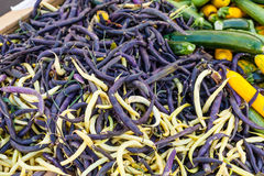 Yellow wax and trionfo violetto beans Stock Photo