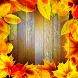 Yellow wet autumn leaves on the background. EPS10 Royalty Free Stock Image
