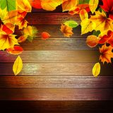 Yellow wet autumn leaves on the background. EPS10 Royalty Free Stock Photos