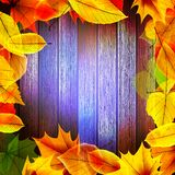 Yellow wet autumn leaves on the background. EPS10 Stock Photo