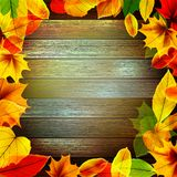 Yellow wet autumn leaves on the background. EPS10 Royalty Free Stock Images