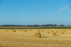 Yellow wheat field with straw bales after harvesting on a sunny day in Normandy, France. Country landscape, agricultural. Fields in summer. Environment friendly Royalty Free Stock Photography