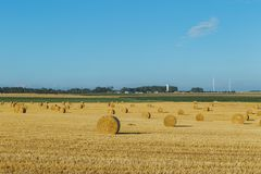 Yellow wheat field with straw bales after harvesting on a sunny day in Normandy, France. Country landscape, agricultural. Fields in summer. Environment friendly Royalty Free Stock Photos