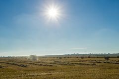 Yellow wheat field with straw bales after harvesting on a sunny day in Normandy, France. Country landscape with sunbeams Royalty Free Stock Photography
