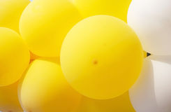 Yellow and white balloons Royalty Free Stock Photography