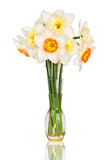 Yellow and white daffodils in vase
