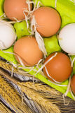 Yellow and white eggs in a box, chicken pen and wheat closeup Stock Photography