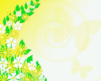 Yellow and White Floral Butterfly Background. Yellow and white flowers with green leaves flowing up the left side with a few yellow and white butterflies and and Royalty Free Stock Image