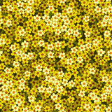 Yellow white flowers seamless background pattern Stock Photos