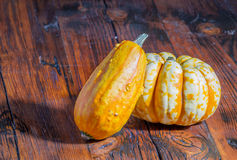 Yellow and white pumpkins displayed on a rustic table Royalty Free Stock Photography
