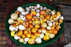 Yellow and white wild mushrooms Stock Image