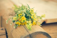 Yellow wildflowers bouquet summer freshness. Yellow wildflowers bouquet summer freshnes Stock Photos