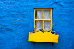 Yellow window Stock Image