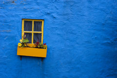 Yellow window flower box on blue wall Stock Photos