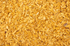 Yellow woodchips Royalty Free Stock Photos