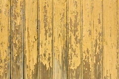 Yellow wooden background Stock Image