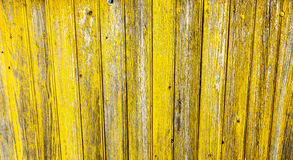 Yellow wooden background fence paling. Royalty Free Stock Image