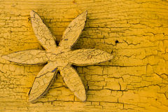 Yellow wooden background with a flower Stock Photo