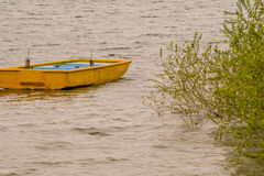 Yellow wooden boat adrift in lake. Small wooden yellow boat drifting in lake with choppy water with a lush green bush extending from the shore over the water Stock Photo
