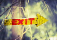 Yellow wooden plaque in the form of an arrow with the word exit  in climbing forest or high wire park on nature sunny background Stock Photos