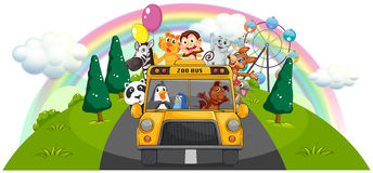 A yellow zoo bus at the road Royalty Free Stock Photo