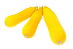 Yellow zucchini Royalty Free Stock Photo