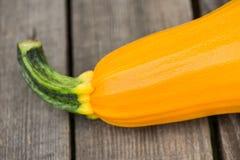 Yellow zucchini Stock Image