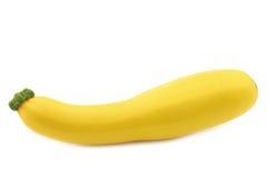 Yellow zucchini ( Cucurbita pepo) Royalty Free Stock Photography