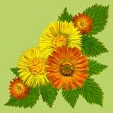 YellowBlossomsCornerGreen Royalty-vrije Stock Afbeeldingen
