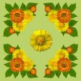 YellowBlossomsNapkinGreen1 Stock Afbeeldingen