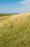 Yellowed grass at an embankment in summertime Stock Photos