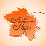 Yellowed maple leaf. Hello Autumn hand lettering. Royalty Free Stock Photos