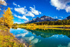 Yellowing aspens and the lake. Canmore, near Banff National Park. The concept of hiking. The path and yellowing aspens surround the lake Stock Photography