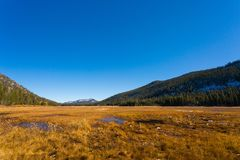 Hope Valley, California, United States. Yellowish grass, plants and trees with blue, clear sky and mountains in the background photogarphed late summer. Hope royalty free stock photo