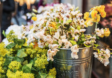 Yellowish white flowers in an iron bucket with Royalty Free Stock Photography
