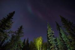 Yellowknife Aurora Borealis 4 Royaltyfri Fotografi