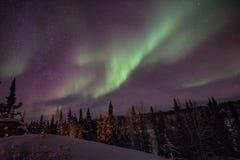 Yellowknife Aurora Delight verte hivernale photographie stock libre de droits