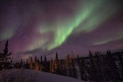 Yellowknife vintriga gröna Aurora Delight royaltyfri fotografi