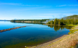 Yellowstone湖海岸线 免版税库存照片