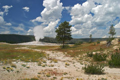 Yellowstone Stock Photo