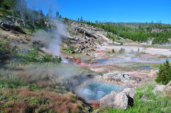 Yellowstone Stock Afbeelding