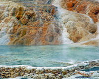 Yellowstone Stock Images