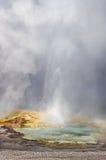yellowstone Stock Foto