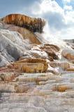 yellowstone Fotografia Stock