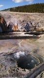 yellowstone Στοκ Φωτογραφίες