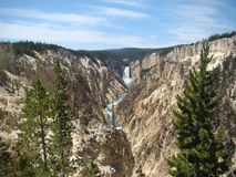 yellowstone Royaltyfri Bild