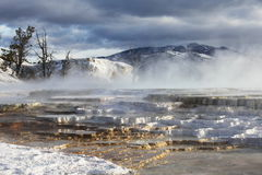 Yellowstone Royalty Free Stock Photography