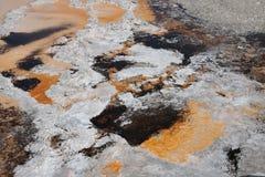 yellowstone Royaltyfria Foton