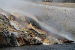 yellowstone Royaltyfri Fotografi